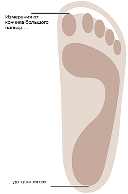 Measure from the tip of the longest toe to the outer edge of your heel.